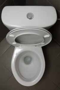 top view of a low flush toilet