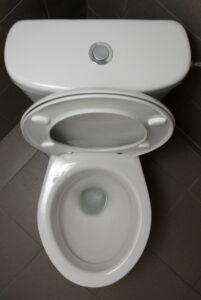 open-toilet